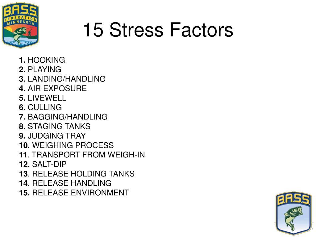 15 Stress Factors