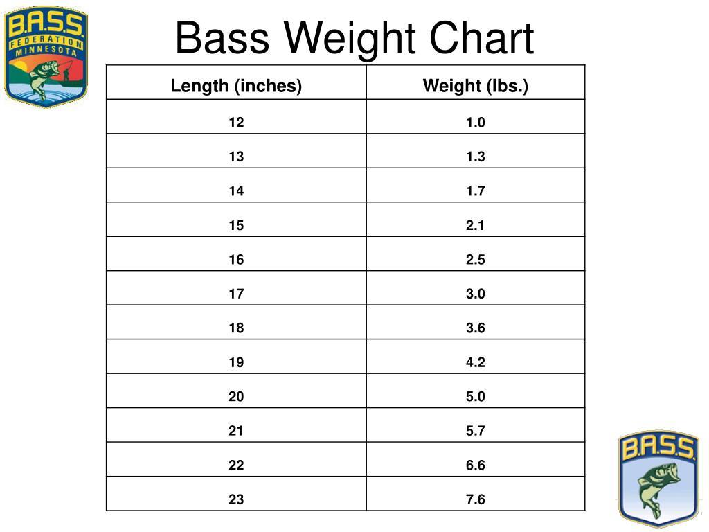 Bass Weight Chart