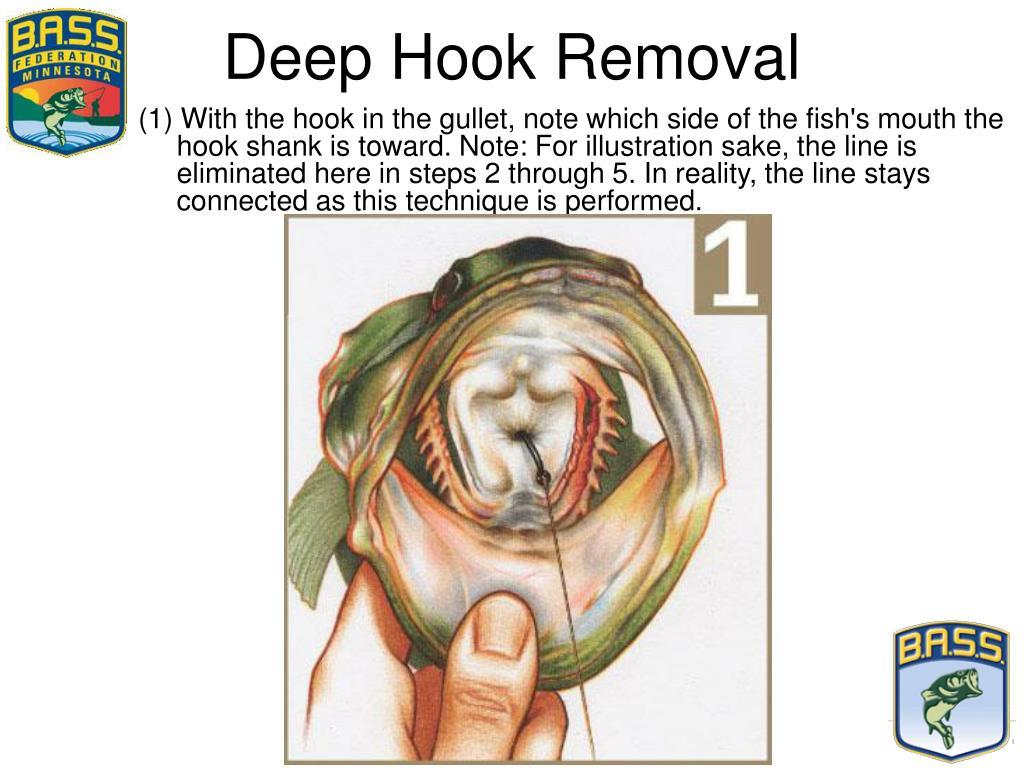 Deep Hook Removal