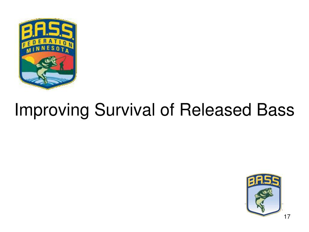 Improving Survival of Released Bass