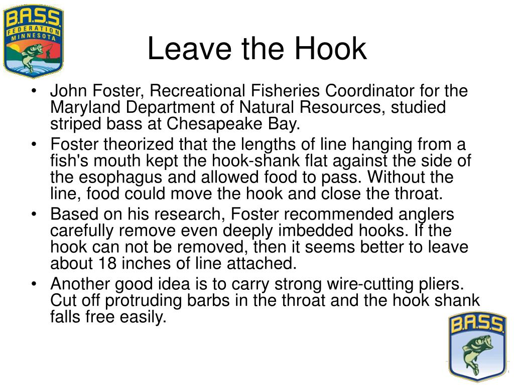 Leave the Hook