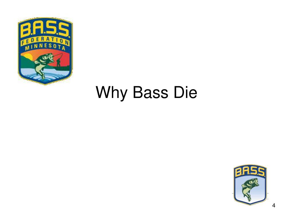 Why Bass Die