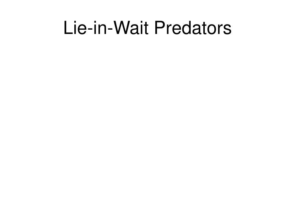 Lie-in-Wait Predators