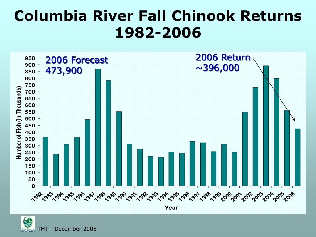 Columbia River Fall Chinook Returns