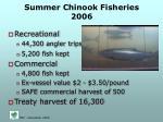 summer chinook fisheries 2006