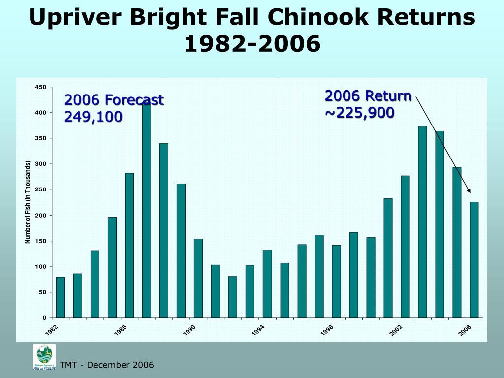 Upriver Bright Fall Chinook Returns