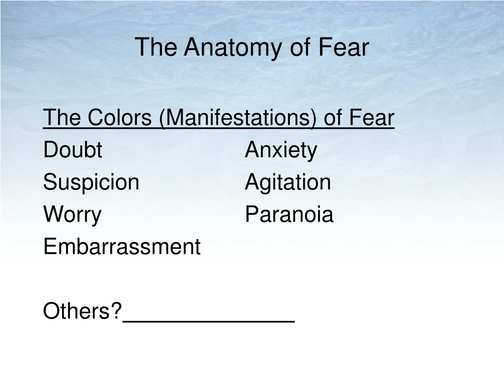 The Anatomy of Fear