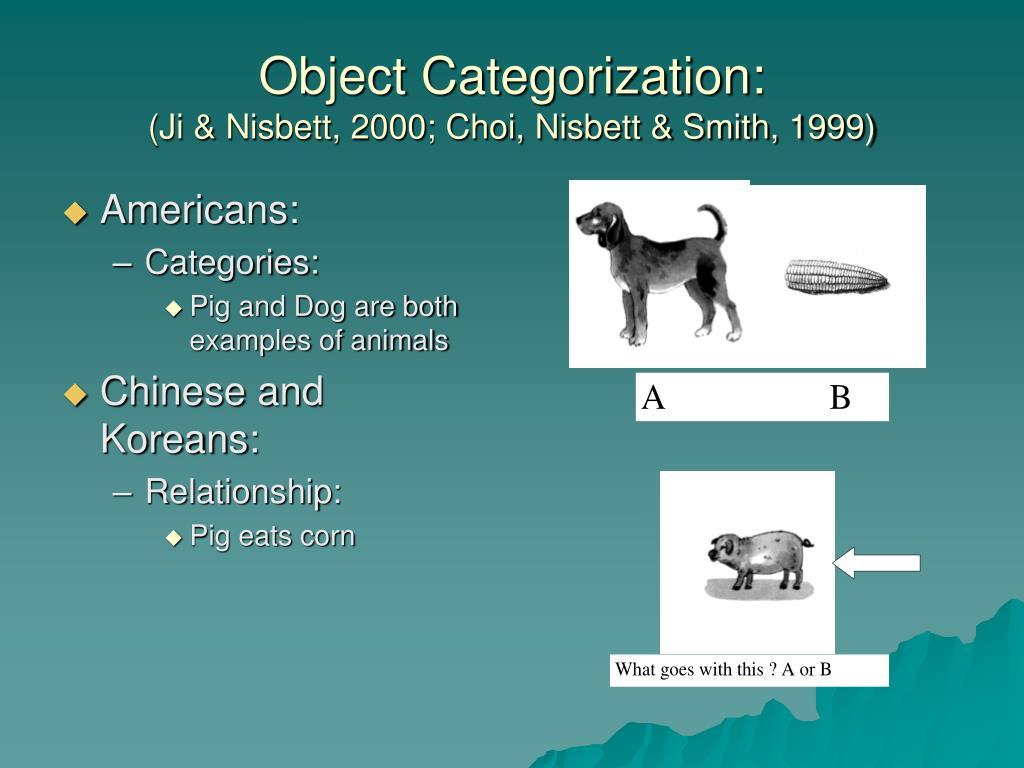 Object Categorization:
