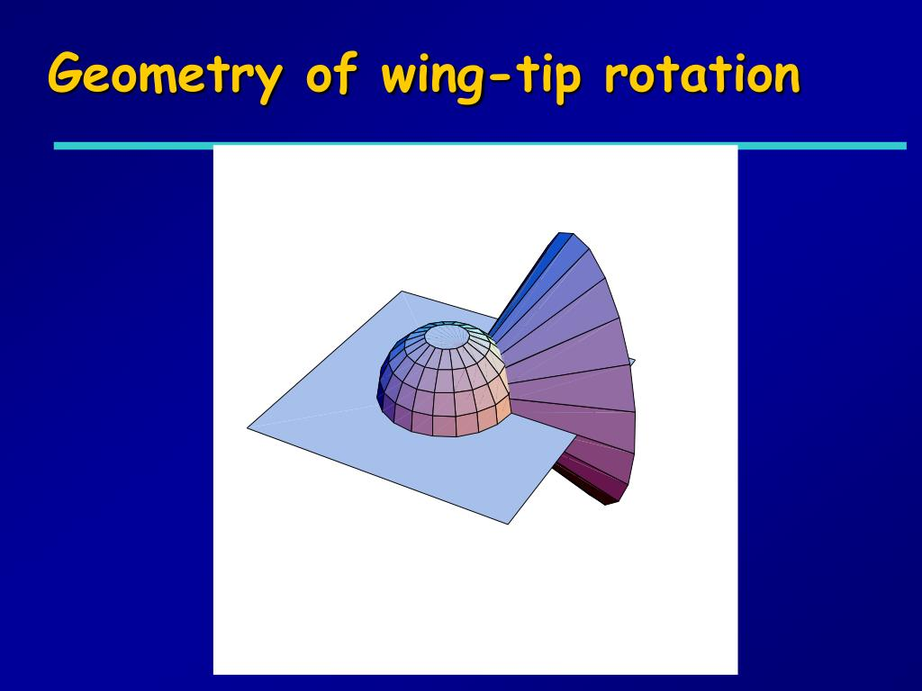 Geometry of wing-tip rotation