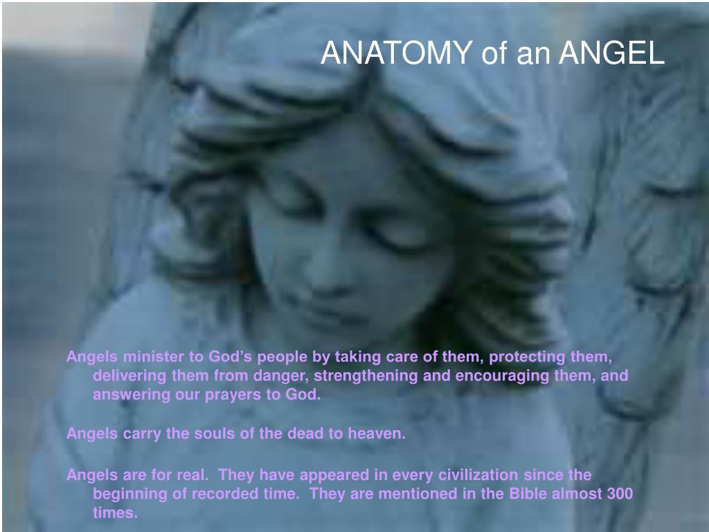 ANATOMY of an ANGEL
