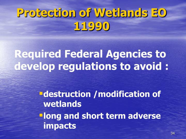 Protection of Wetlands EO 11990