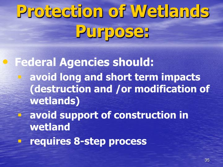 Protection of Wetlands Purpose: