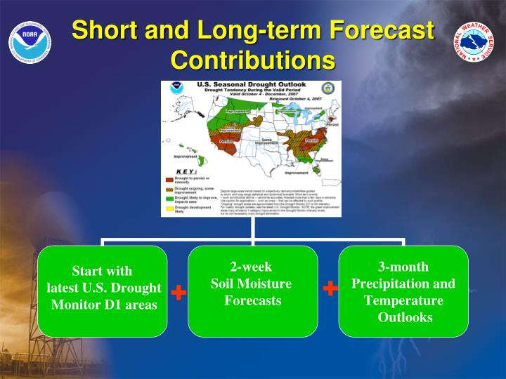 Short and Long-term Forecast Contributions
