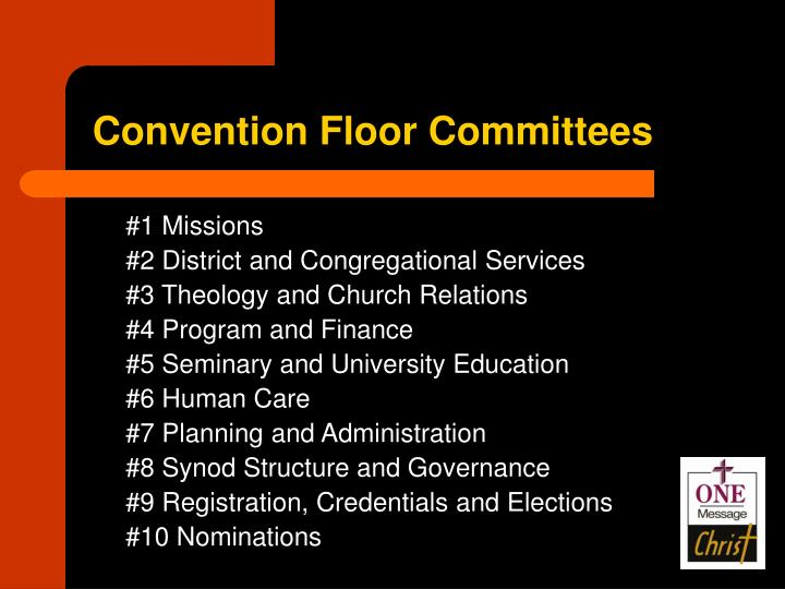 Convention Floor Committees
