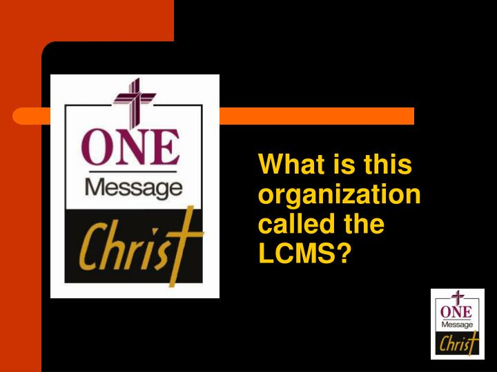 What is this organization called the LCMS?