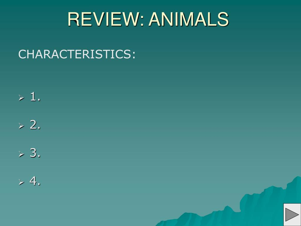 REVIEW: ANIMALS