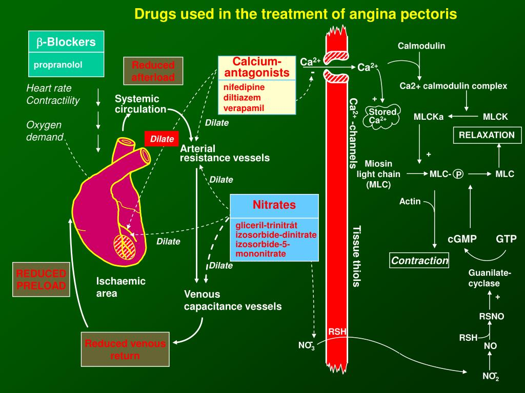 Drugs used in the treatment of angina pectoris