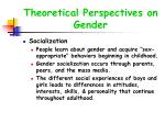 theoretical perspectives on gender23