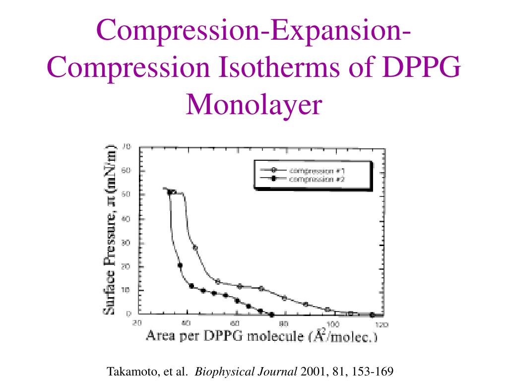 Compression-Expansion-Compression Isotherms of DPPG Monolayer
