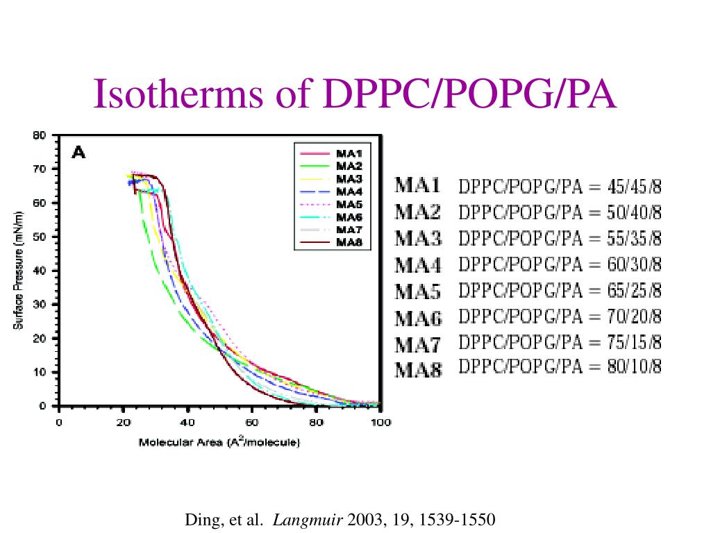 Isotherms of DPPC/POPG/PA