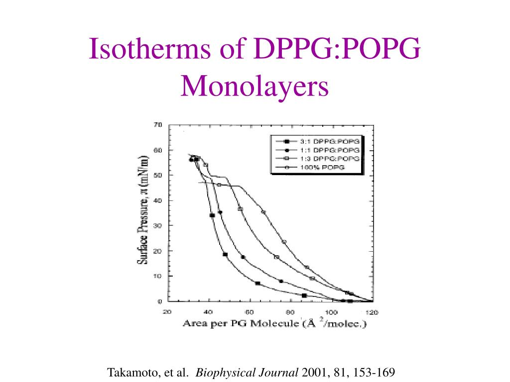 Isotherms of DPPG:POPG Monolayers