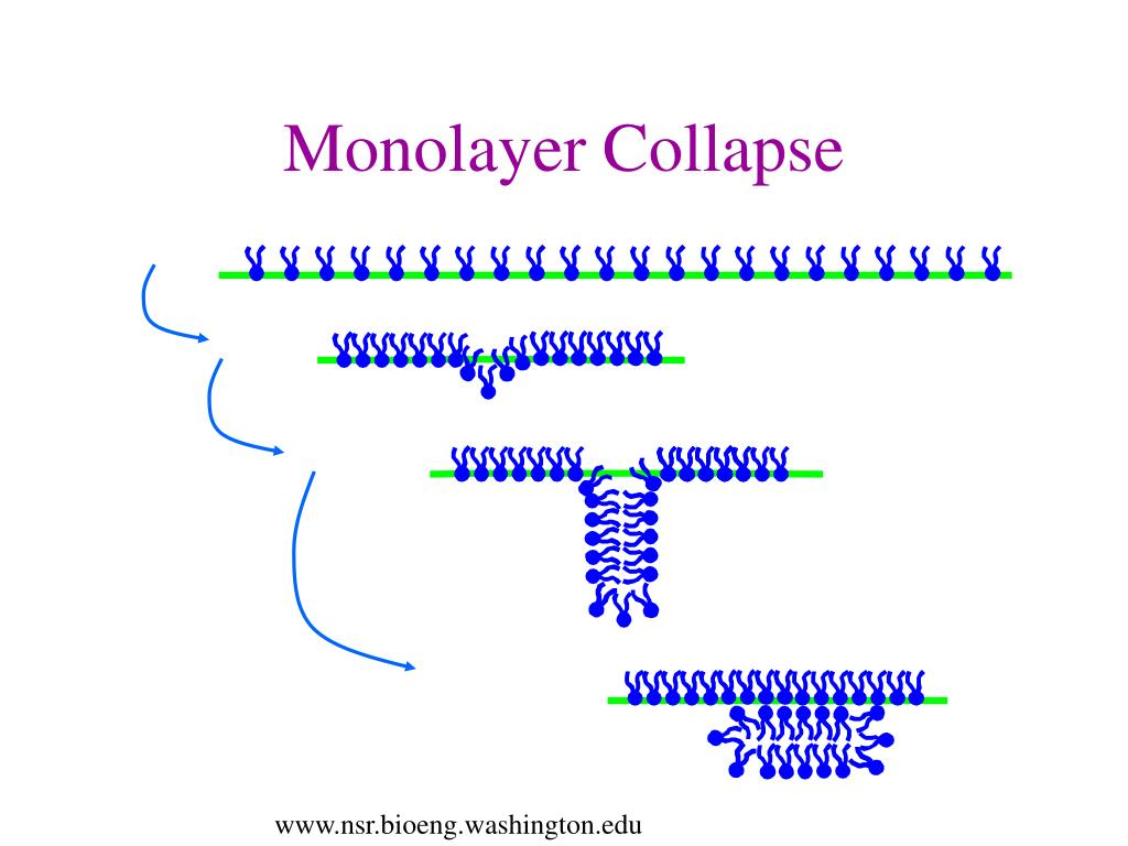Monolayer Collapse