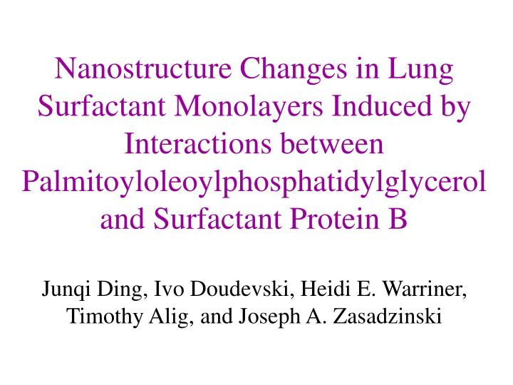 Nanostructure Changes in Lung Surfactant Monolayers Induced by Interactions between Palmitoyloleoylp...