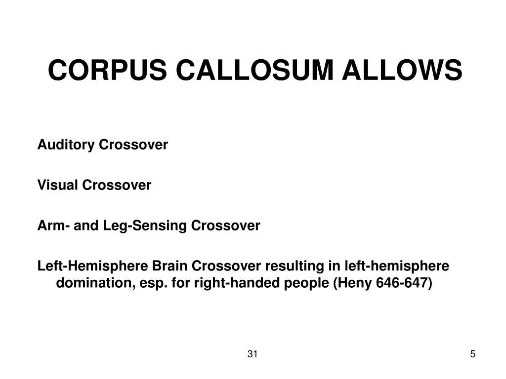 CORPUS CALLOSUM ALLOWS