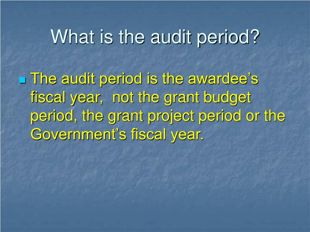 What is the audit period?