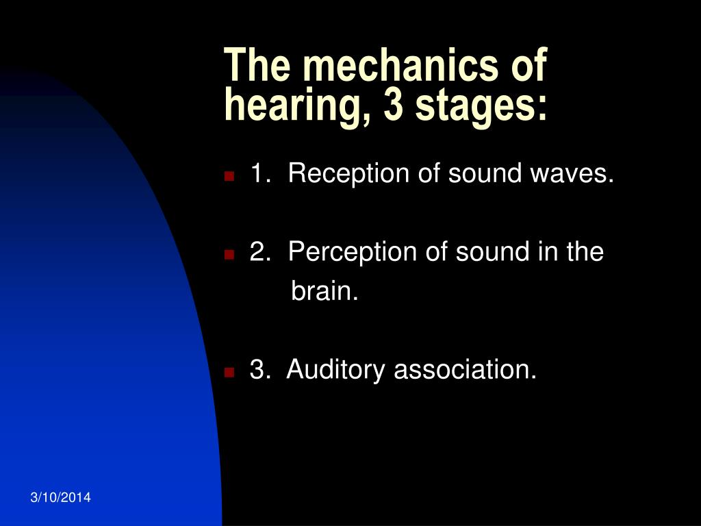 The mechanics of hearing, 3 stages: