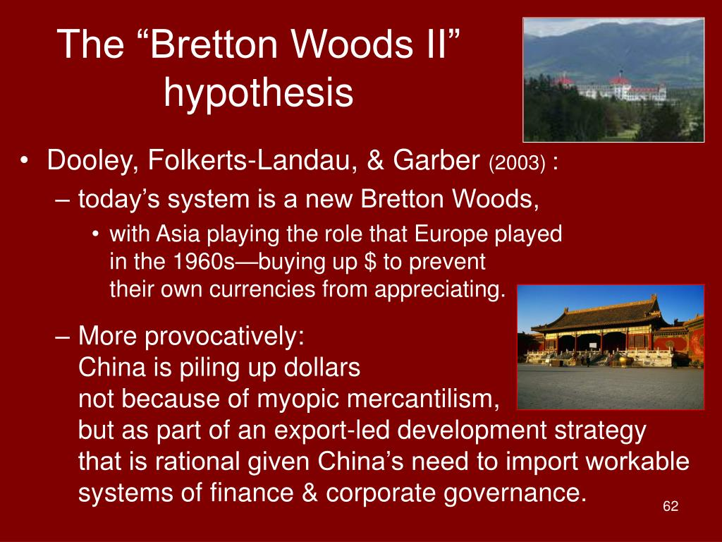 """The """"Bretton Woods II"""" hypothesis"""