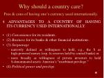 why should a country care pros cons of having one s currency used internationally