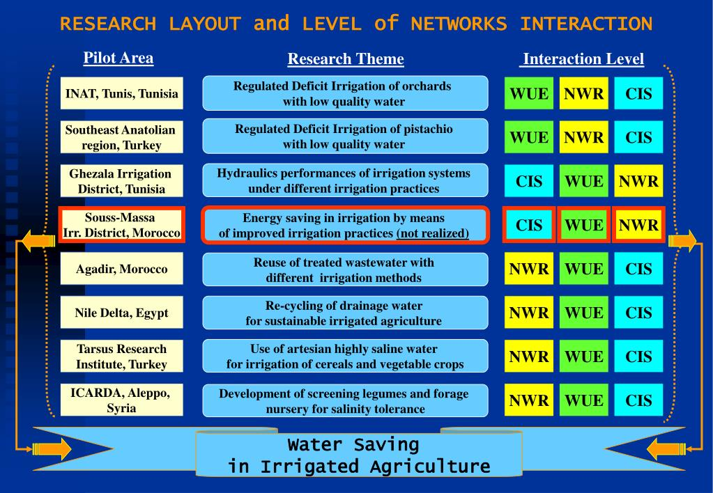 RESEARCH LAYOUT and LEVEL of NETWORKS INTERACTION