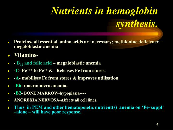 Nutrients in hemoglobin synthesis.