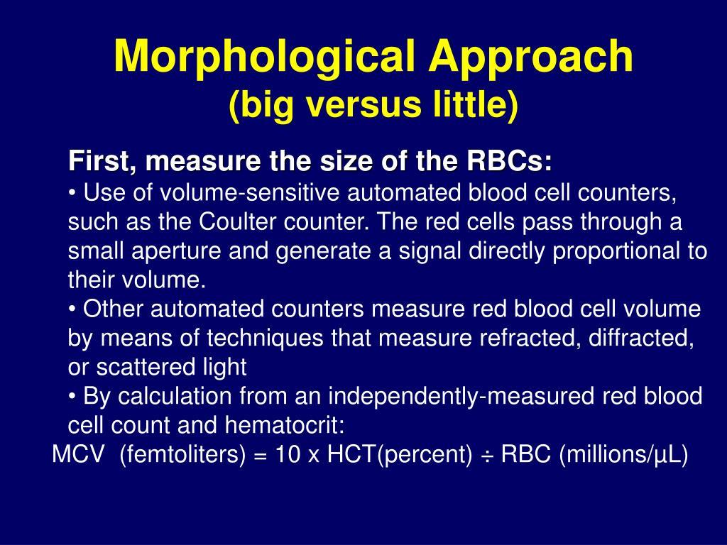 Morphological Approach
