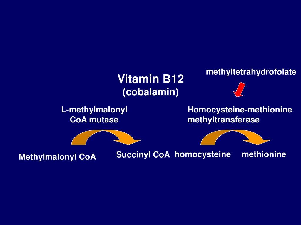 methyltetrahydrofolate