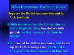 what determines exchange rates16