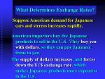 what determines exchange rates22