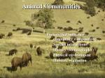 animal communities