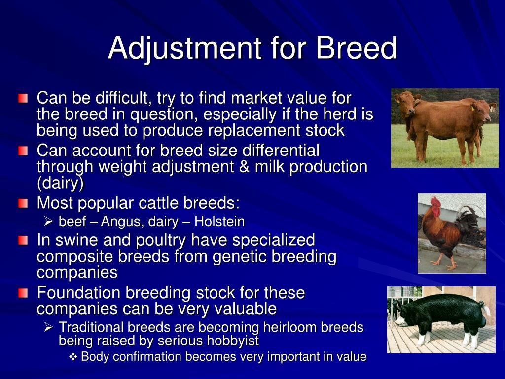 Adjustment for Breed