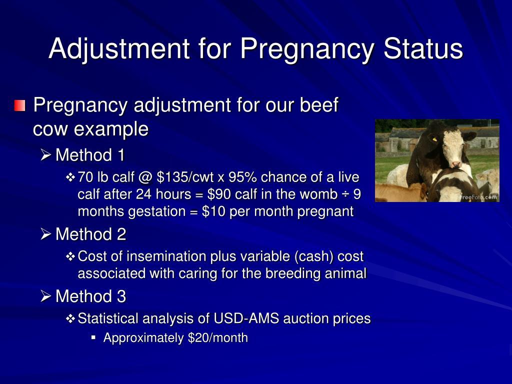 Adjustment for Pregnancy Status