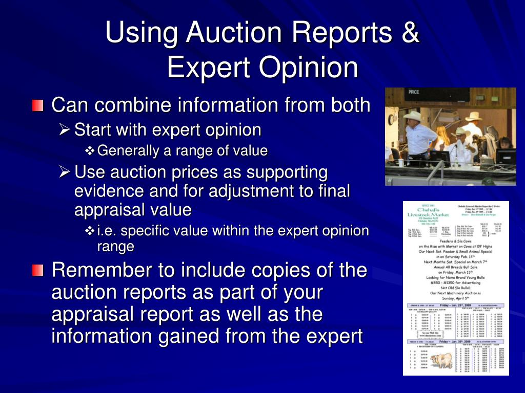 Using Auction Reports &
