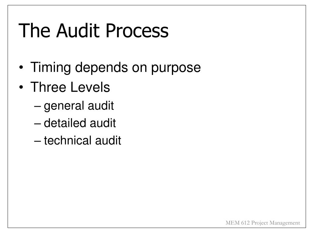 The Audit Process