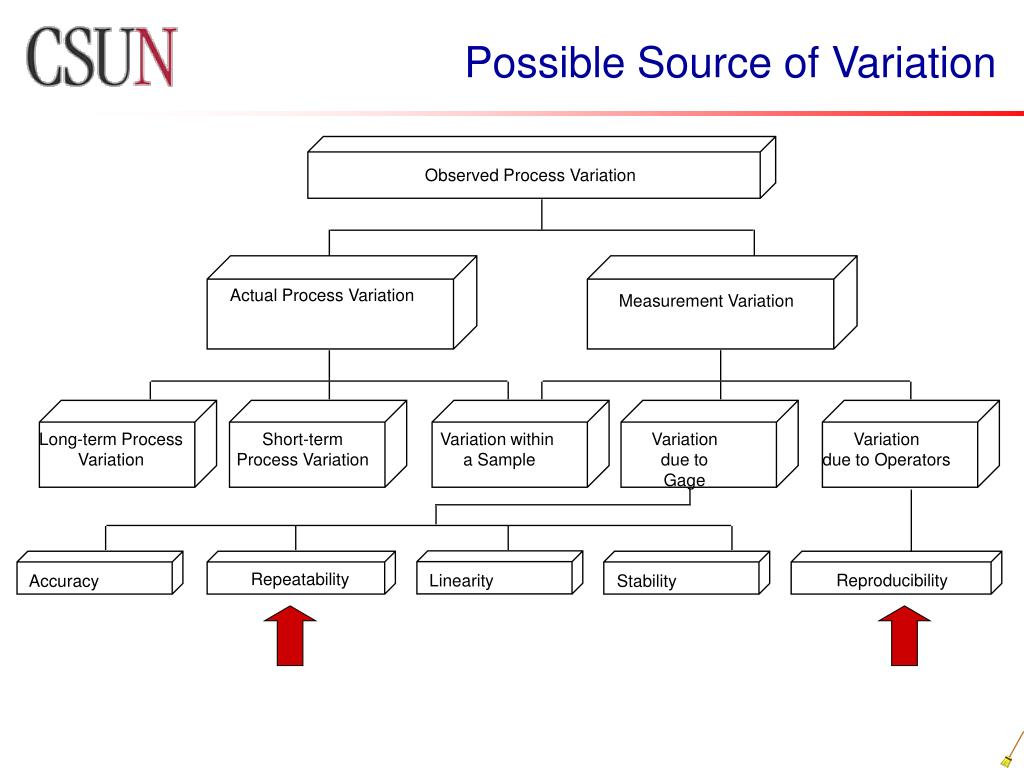 Observed Process Variation