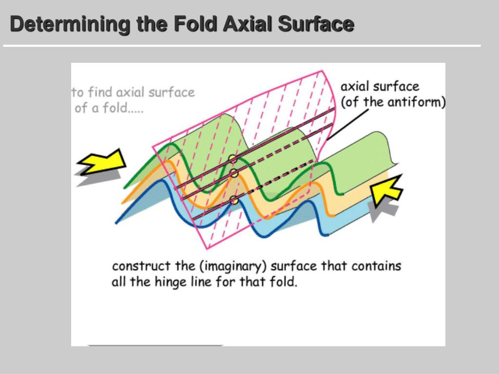 Determining the Fold Axial Surface