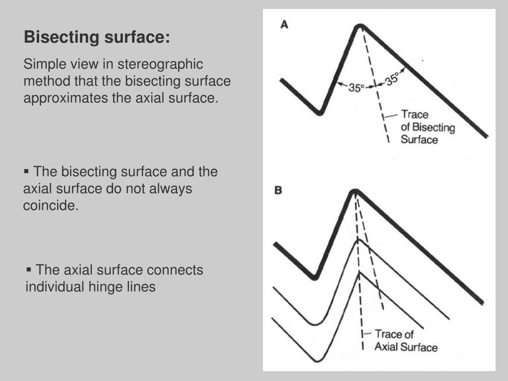 Bisecting surface:
