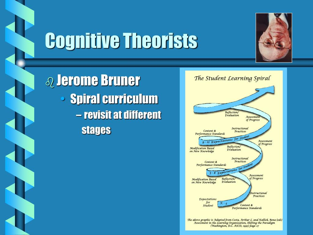 Cognitive Theorists