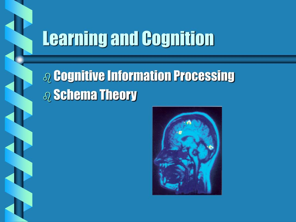 learning and cognition