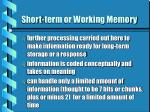 short term or working memory