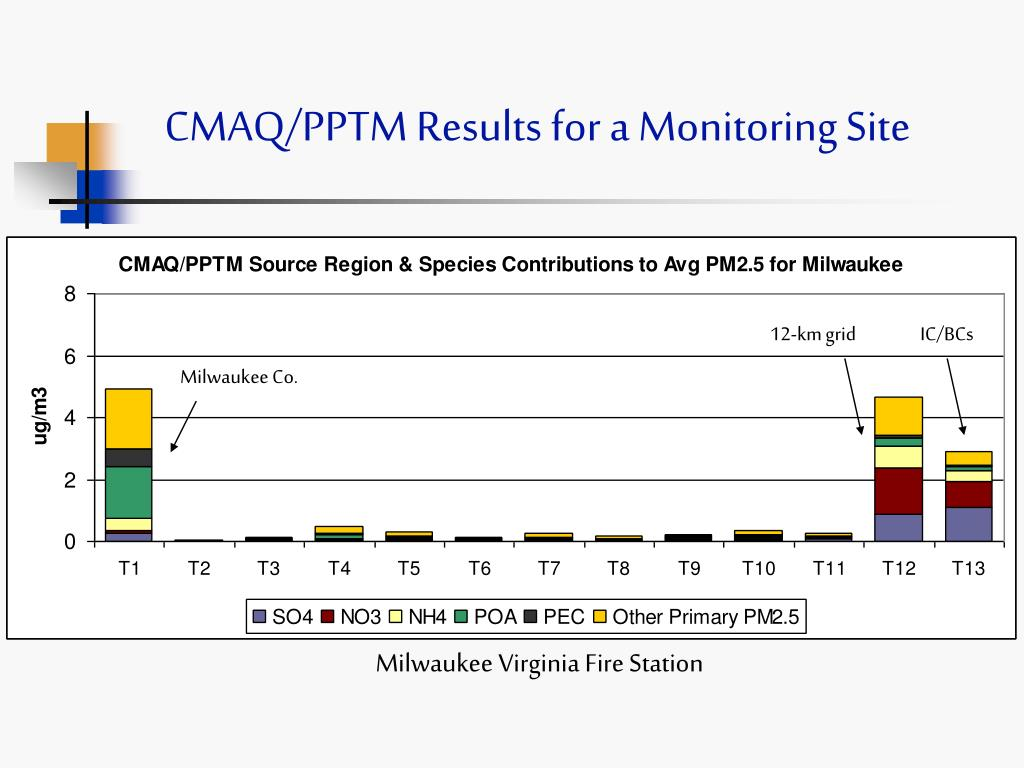 CMAQ/PPTM Results for a Monitoring Site